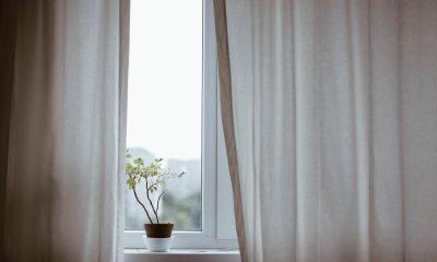 Okna pasywne, dźwiękoszczelne, panoramiczne – jakie wybrać od naszego domu?